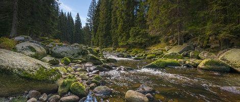 Ubytování na Šumavě. Panenská příroda Šumavy přímo vyzývá k návštěvě.Jak v horkých letních dnech, kdy se můžete schovat do stínu stromů a osvěžit se třeba u pramene Vltavy, tak v zimě, kdy zde najdete jedny z nejlepších běžeckých tratí. Tak neváhejte a vyrazte do hor!