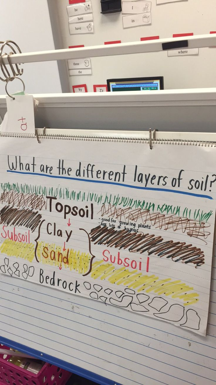 17 best images about 6th grade science soil and freshwater for Soil 6th grade science