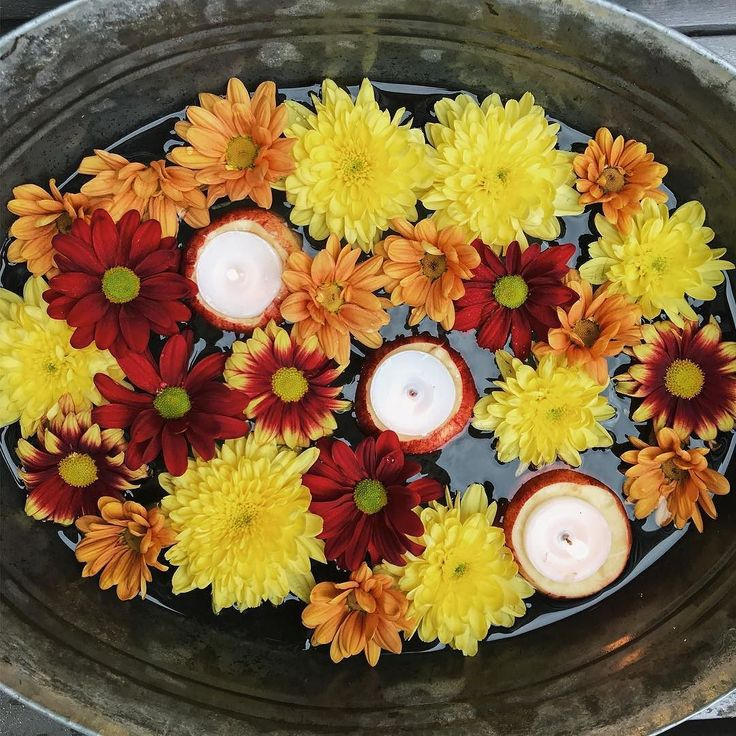 Autumn festival. Apple tea lights. Chrysanthemums. Harvest. Halloween. Bonfire night. Seasonal styling. Instagram by @capturebykaye