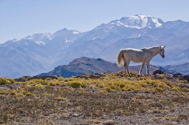 Gateway to the Andes: 5 Great Hikes Around Santiago