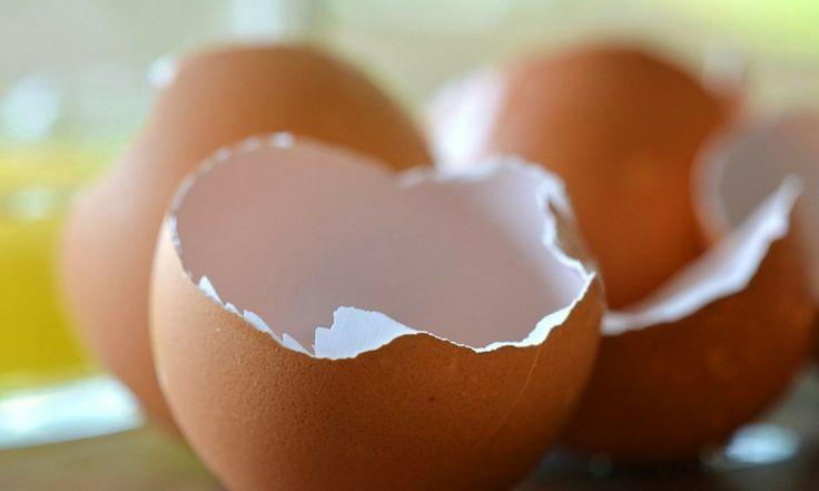Gusci d'uovo: 6 rimedi naturali per riutilizzarli
