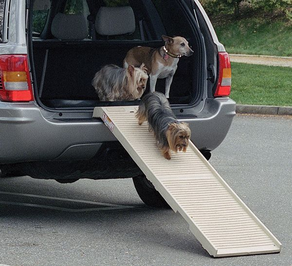 PetSTEP Folding Pet Ramp - http://www.autoanything.com/pet-travel/69A1365A0A0.aspx