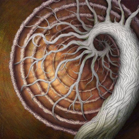 Spiral artCircles, Spirals, Inspiration, White Tattoo, Trees Of Life, Art, Doces Paul, Barbed Wire, Medusa Gardens