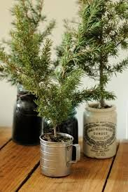 recycling old artificial christmas trees - Google Search