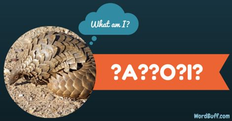 HINT: I am the only known scaled mammal in the world.