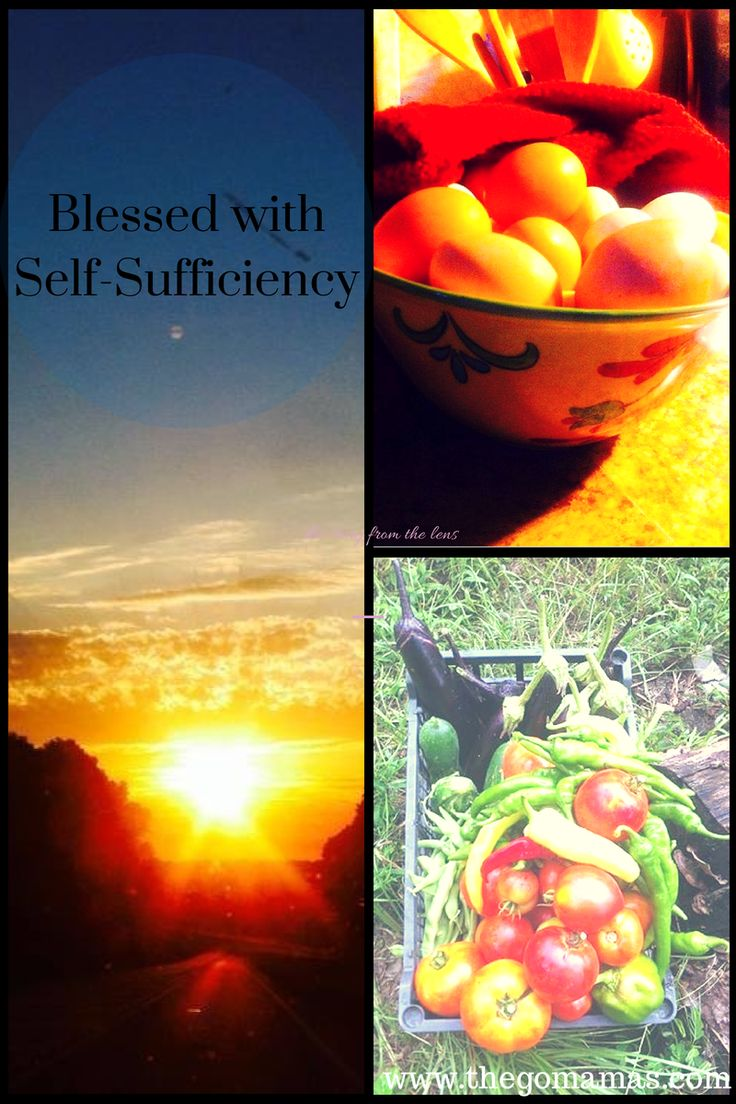 Benefits: Blessed with Being Self Sufficient | The GO Mamas