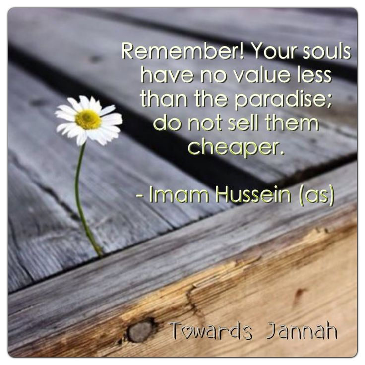 """""""Remember! Your souls have no value less than the paradise; do not sell them cheaper."""" -Imam Husain (AS)"""