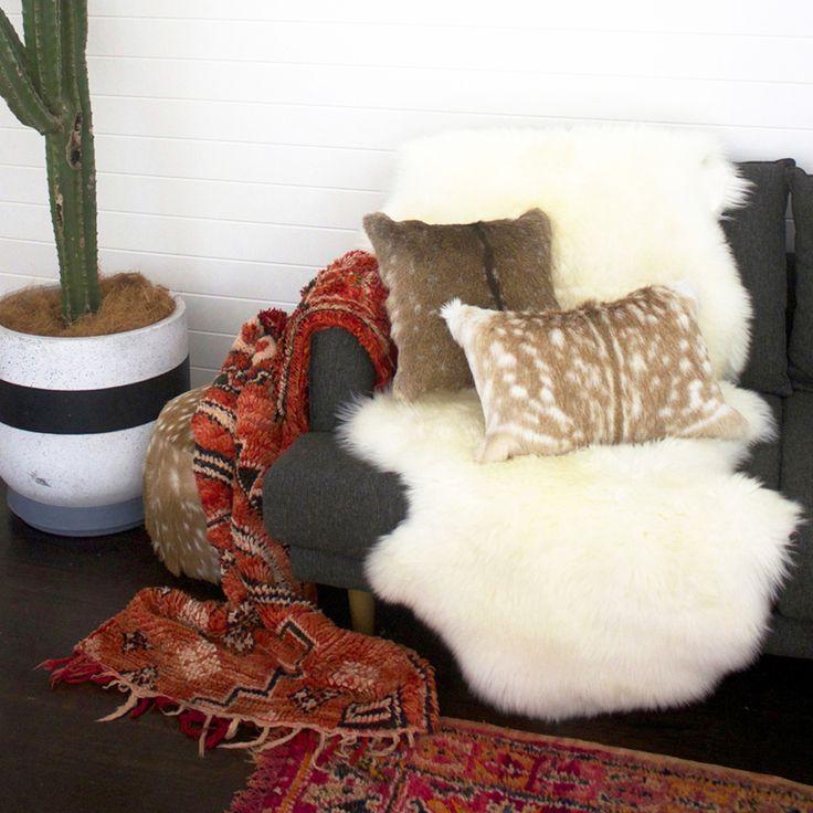 Sheep Skin and Animal Hide