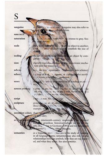 Singing Sparrow | Flickr: partage de photos!