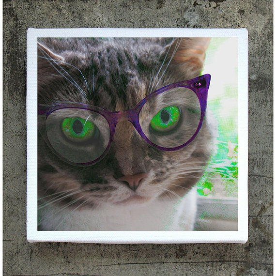Cat Face on 5x5 Canvas Print Block  Miki Four Eyes  by PeyLu, $28.00