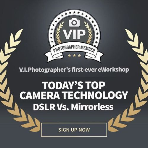 Become a V.I.Photographer member now to take advantage of our first-ever eWorkshop on August 15 2017: Todays Top Camera TechnologyDSLR Vs. Mirrorless! Demystify the technology at the core of todays digital cameras and figure out which is right for you. Sign up now link in bio.    #viphotographer #eworkshop #DSLR #mirrorless #technology #digitalcameras via Outdoor Photographer on Instagram - #photographer #photography #photo #instapic #instagram #photofreak #photolover #nikon #canon #leica…