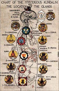 85 best satya images on pinterest  spirituality yoga