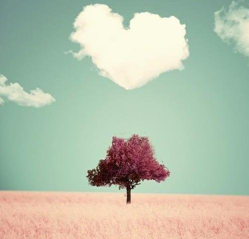 Dicen que cuando nos enamoramos de una persona a primera vista es porque esa persona fue nuestro amor en otra vida.
