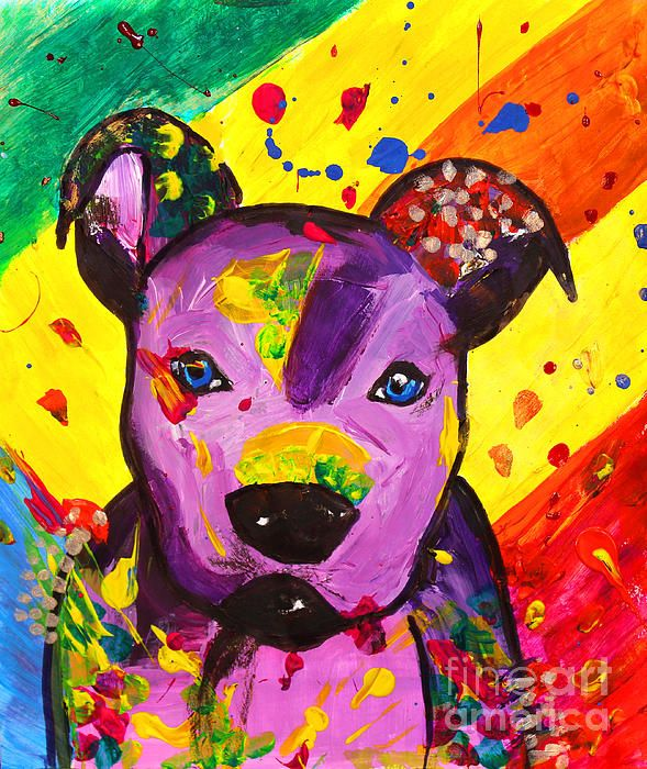 American Pitbull Terrier Dog Pop Art by Fine Artist Julia Apostolova  This image is a print of original SOLD Acrylic Hand Made Pop Art ''American Pitbull Terrier Dog''. The original Contemporary Pop Art modern painting is painted on gallery wrapped acid free canvas. Only fine quality art materials have been used. Final coat of fine art varnish was applied to preserve your investment against UV and dust. Signed and dated by the artist.