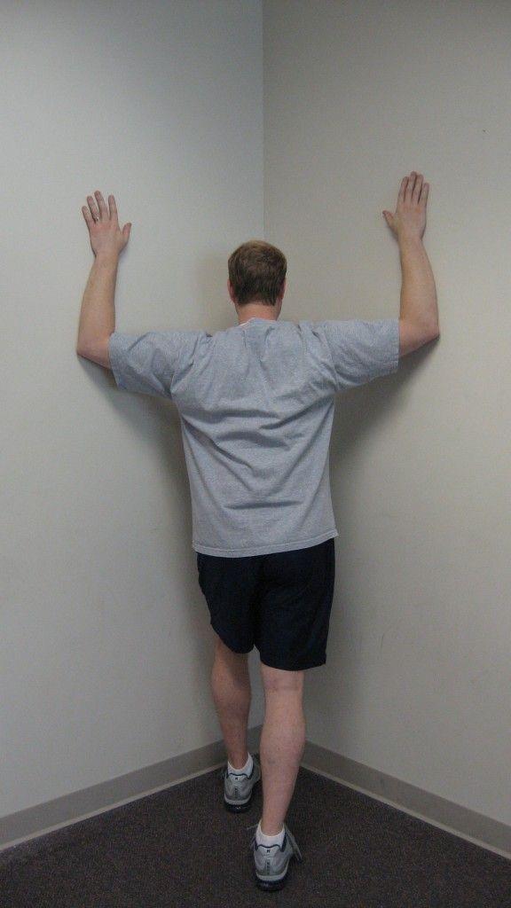 posture exercises - the back university