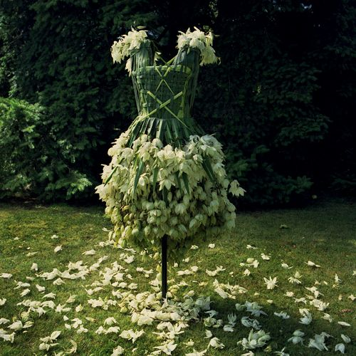 enchanted garden   fairy dress #dresses #fairy #fashion