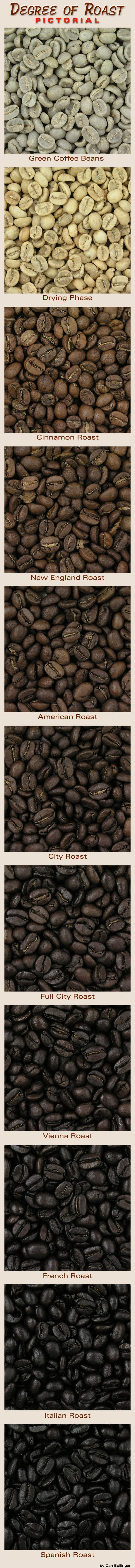 Coffee roasting from beginning to your cup.