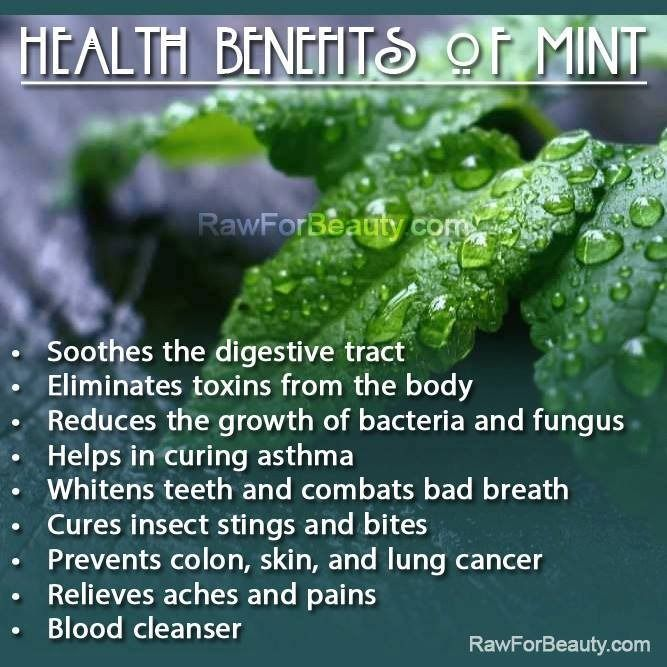 Health benefits of mint  - another bonus:  mint is so easy to grow that it goes out of control if you don't watch it!