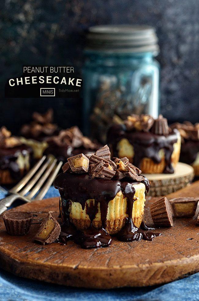Mini peanut butter cheesecake recipe at TidyMom.net