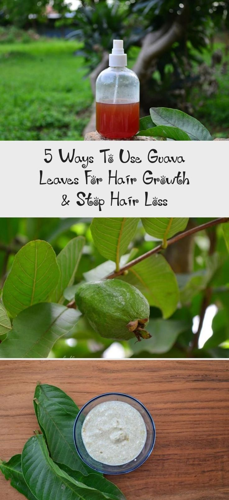 5 ways to use guava leaves for hair growth