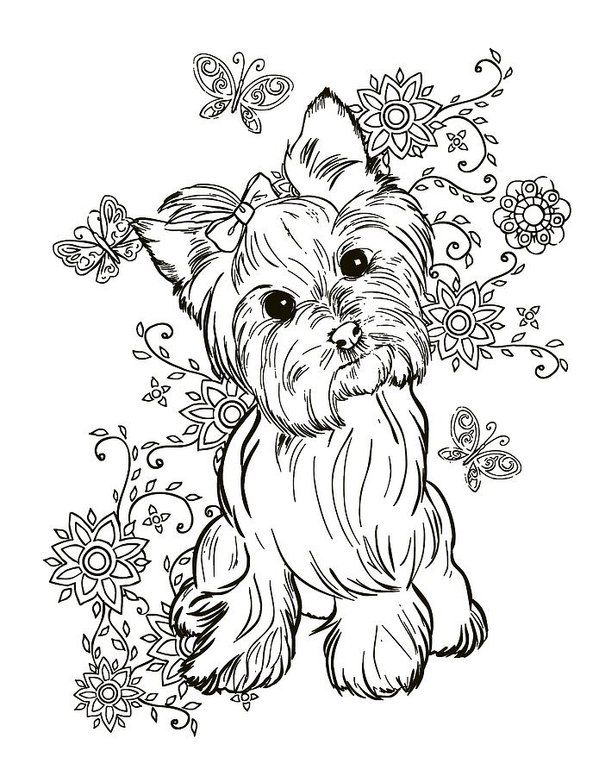 Yorkie Terrier Art Print By Cindy Elsharouni Dog Coloring Page Animal Coloring Pages Coloring Books
