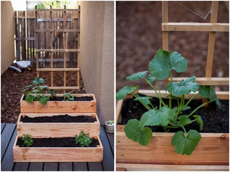 Best 25+ Patio herb gardens ideas only on Pinterest ...