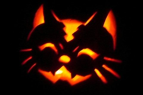 Cat halloween pumpkin carving pattern halloween Cat pumpkin carving patterns