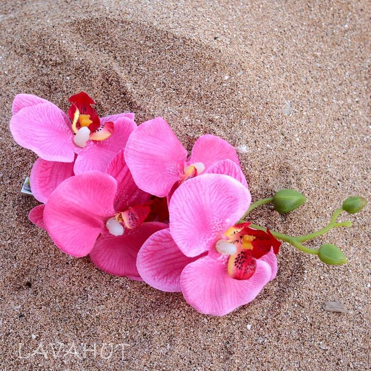 Orchid Magenta Hawaiian Flower Hair Clip  #hawaiian #madeinhawaii
