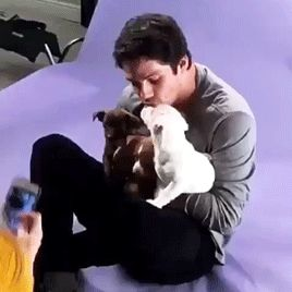 Dylan O´Brien with puppies gif