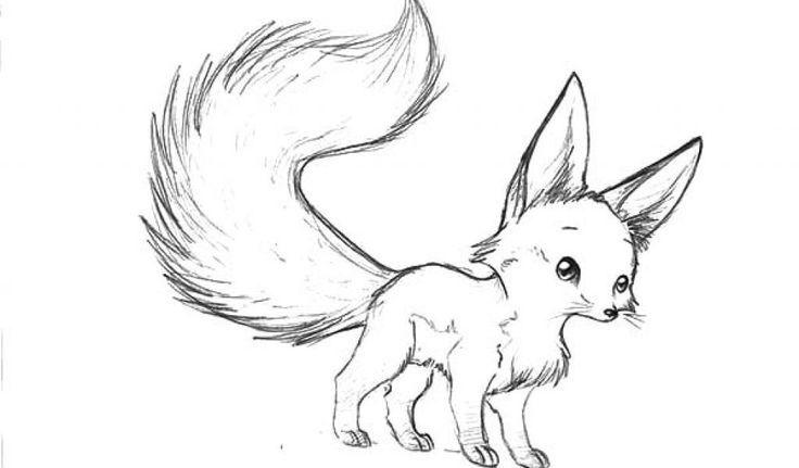 Coloring Rocks Fox Coloring Page Cute Fox Drawing Fox Sketch