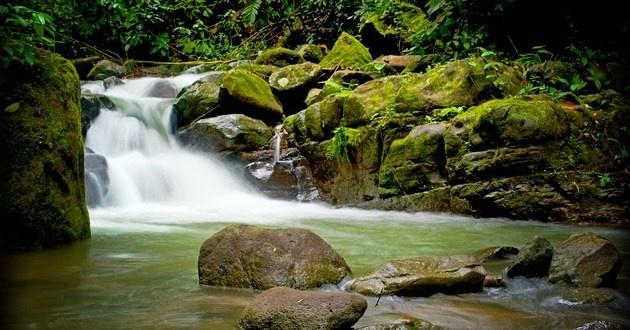 Oxygen Jungle Villas in Uvita De Osa, Puntarenas, Costa Rica - Hotel Travel Deals