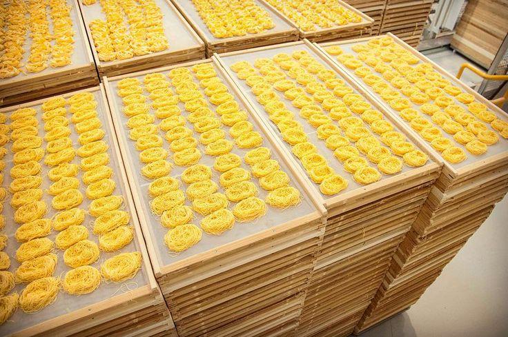 Telai di pasta secca all'uovo. Qui non ci si ferma mai!! #pasta #LucianaMosconi #Marche