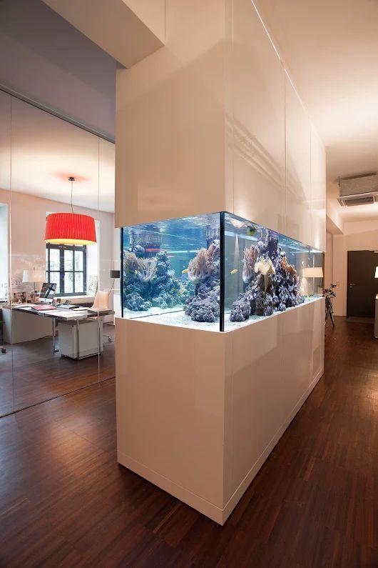 Meerwasser Raumteiler In Designaquarienmöbel. Premium Aquariumbau  Www.aquariumwest.de # MarkusMahl. Aquarium Raumteiler ...