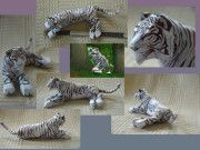 Zoo Tycoon - White Bengal Tiger Free Papercraft Download