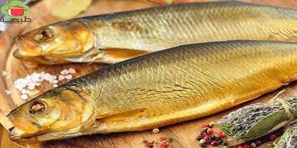 طريقة عمل و تنظيف الرنجة بوصفات مختلفة موقع طبخة Fish Food Meat
