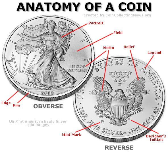 Anatomy of a Coin shows the places of importance on the coin to make it rare and valuable.