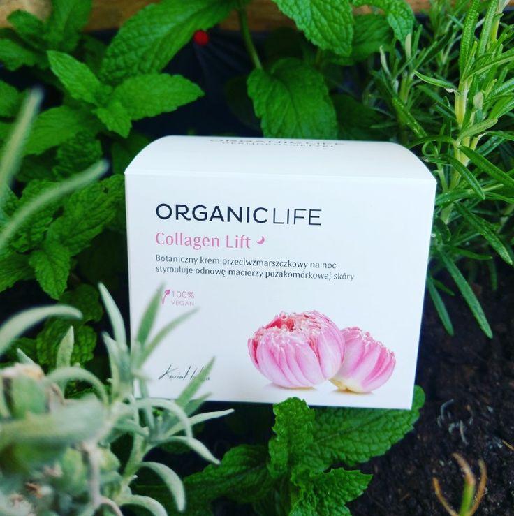 """Puk, puk.  - """"Kto tam?"""" - """"Kurier!"""" Uwielbiam takie niespodzianki   Oto krem Organic Life. Botaniczny, przeciwzmarszczkowy, 100% vegański KWIAT LOTOSU.   #organiclife #njaknatura #antiaging #lotos #nature #naturalcosmetics"""