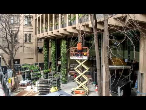 Colonel Light Centre Green Wall Timelapse - YouTube