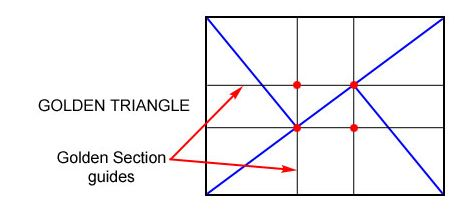 """Basic Photography Lessons: """"The Golden Triangle Rule"""" « Yoga World's Blog"""