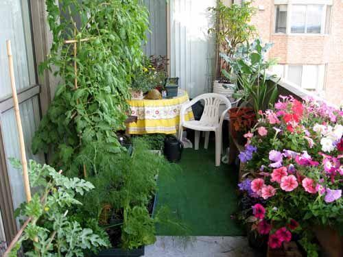 Balcony gardening (urban forum at permies)