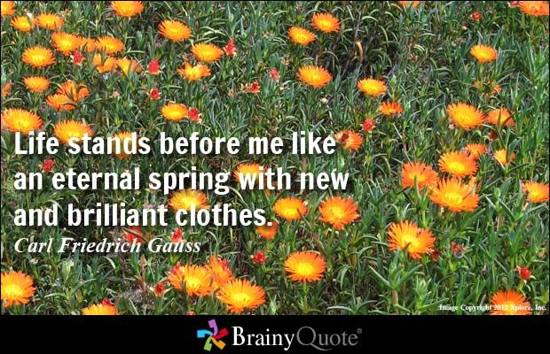Life stands before me like an eternal spring with new and brilliant clothes. - Carl Friedrich Gauss