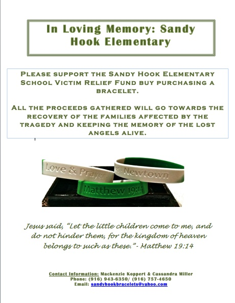 support for sandy hook The shooting killed 20 first-graders and six educators at sandy hook elementary school on dec even when the facts support a total breakdown of school.