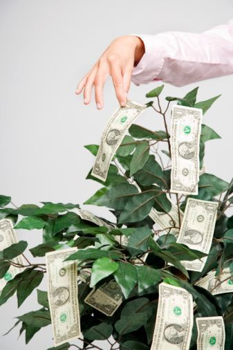 how to make a diy money tree