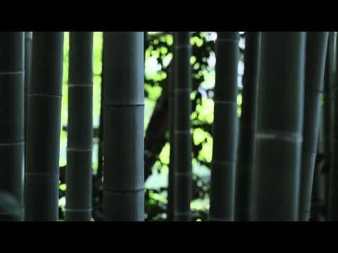 八芳園採用動画 2015 オープニング - YouTube
