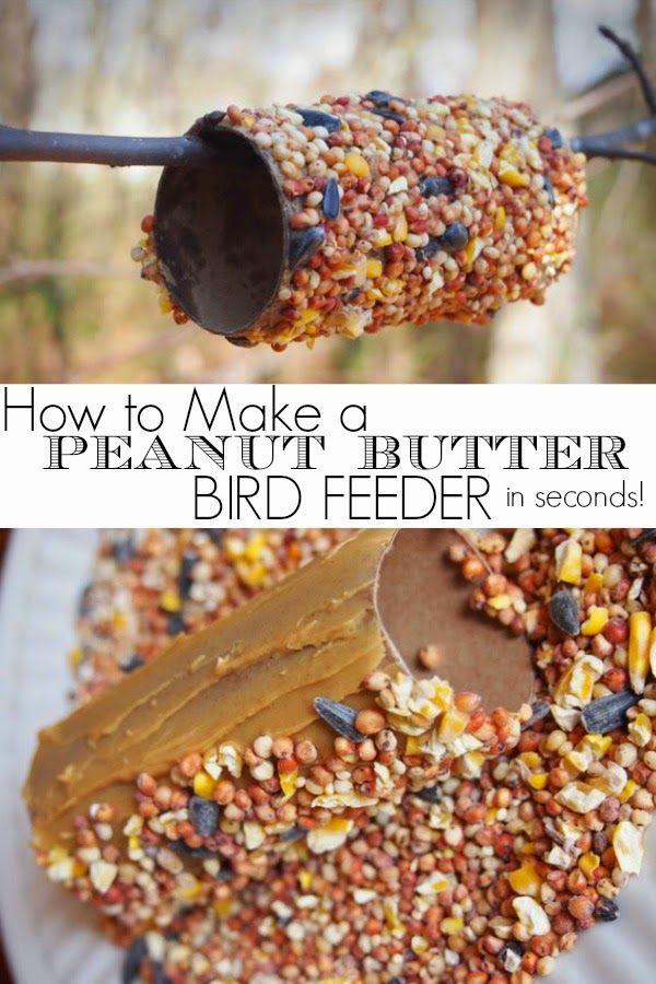 winter : voedsel voor de vogels