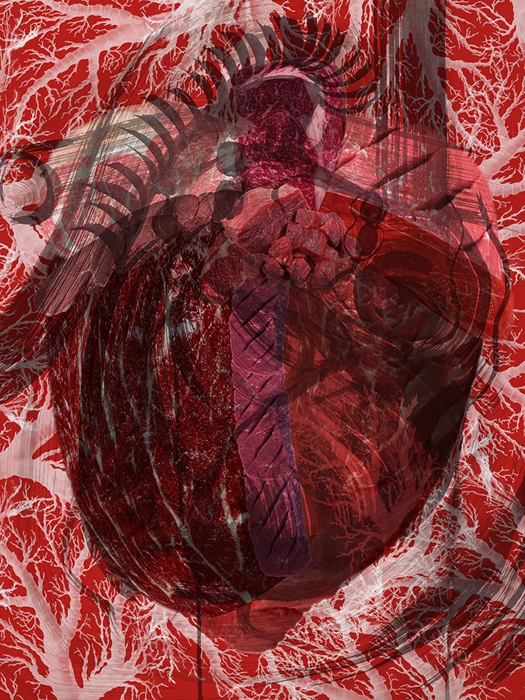 """Meat Heart II (Drawn) by Kim-Lee Kho Digital mixed media, pigment print on hot press paper 36"""" x 24"""" (image size 24"""" x 18""""), edition of 3, $385. each Also available: 11 x 8.5"""", edition of 15, for $25. each Contact me here or better yet via my website if interested www.kimleekho.ca. Shipping is extra."""