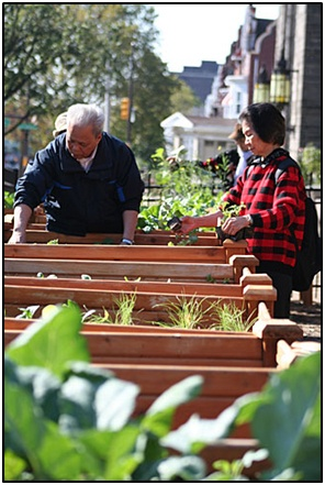 Keeping a plot in a community garden is a great way to stay active and make some new friends!