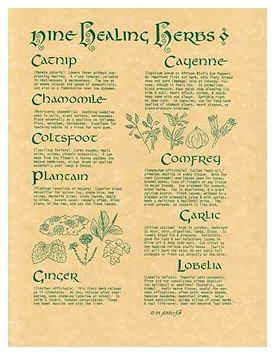 Pagan Parchment Poster - Nine Healing Herbs | The Magickal Cat Online Pagan/Wiccan Shop