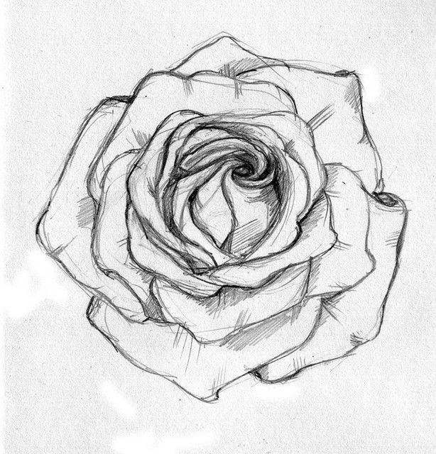 Картинки для срисовки очень легкие и красивые розы, день