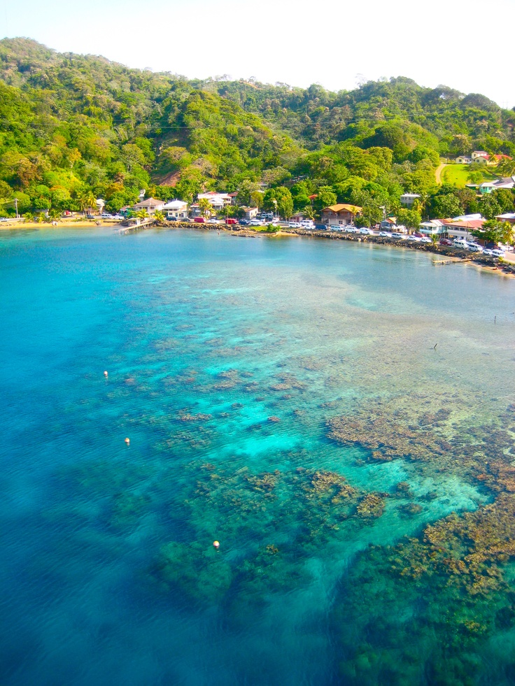 17 Best Images About Roatan Infinity Bay And Coral Vista